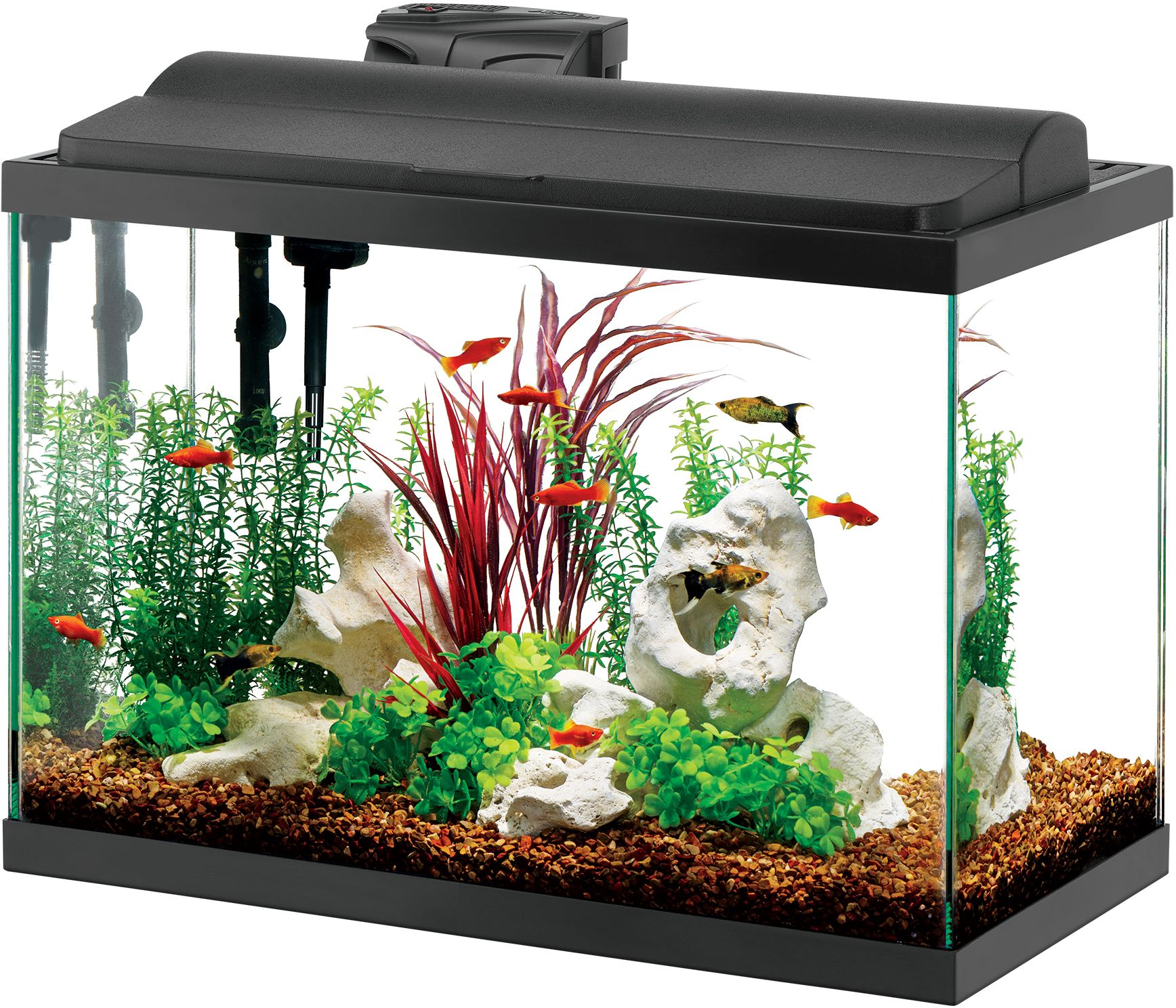 Aqueon deluxe led aquarium kit black 20 gallon ebay for Aqueon fish tank