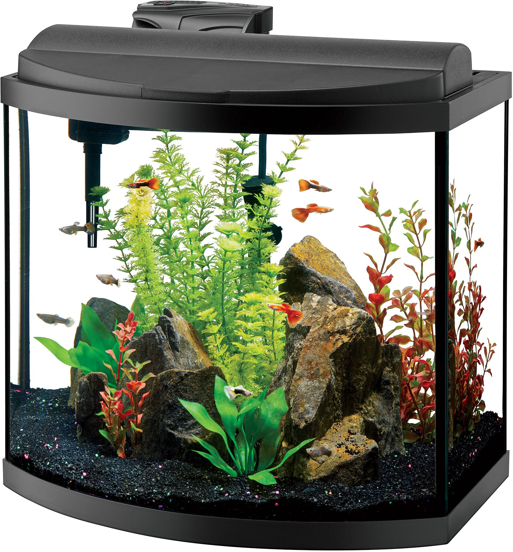 Aqueon deluxe led bow front aquarium kit black 16 gallon for Fish tank and stand combo